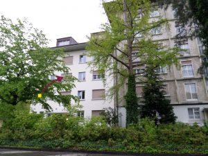 Seitensprungzimmer Wankdorffeldstrasse Bern